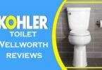 KOHLER WELLWORTH TOILET REVIEWS