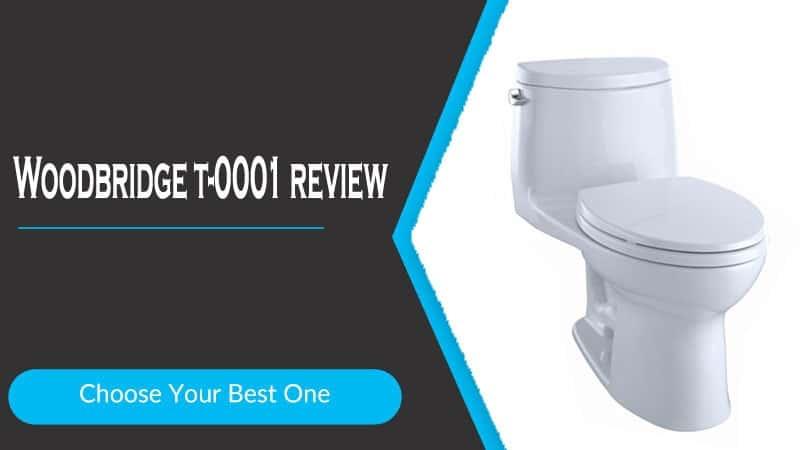 Woodbridge t-0001 review